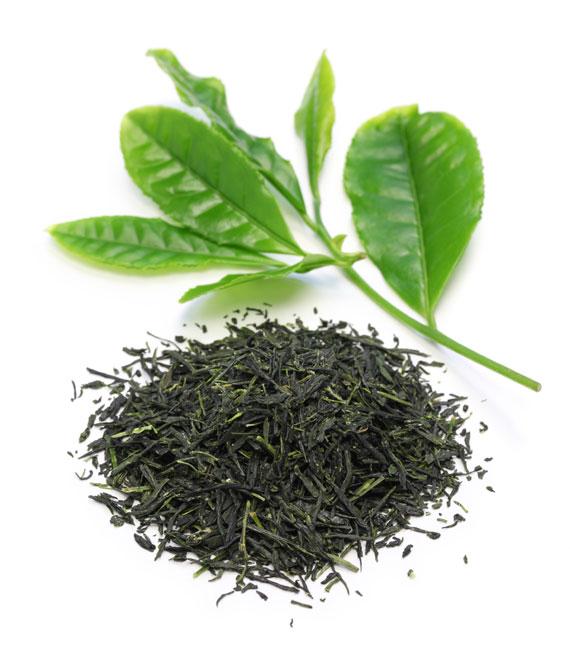 Grüner Tee - Gyokuro