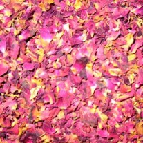 Rosenblütenblätter dunkel