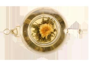 Jin Yuan Bao Blüte