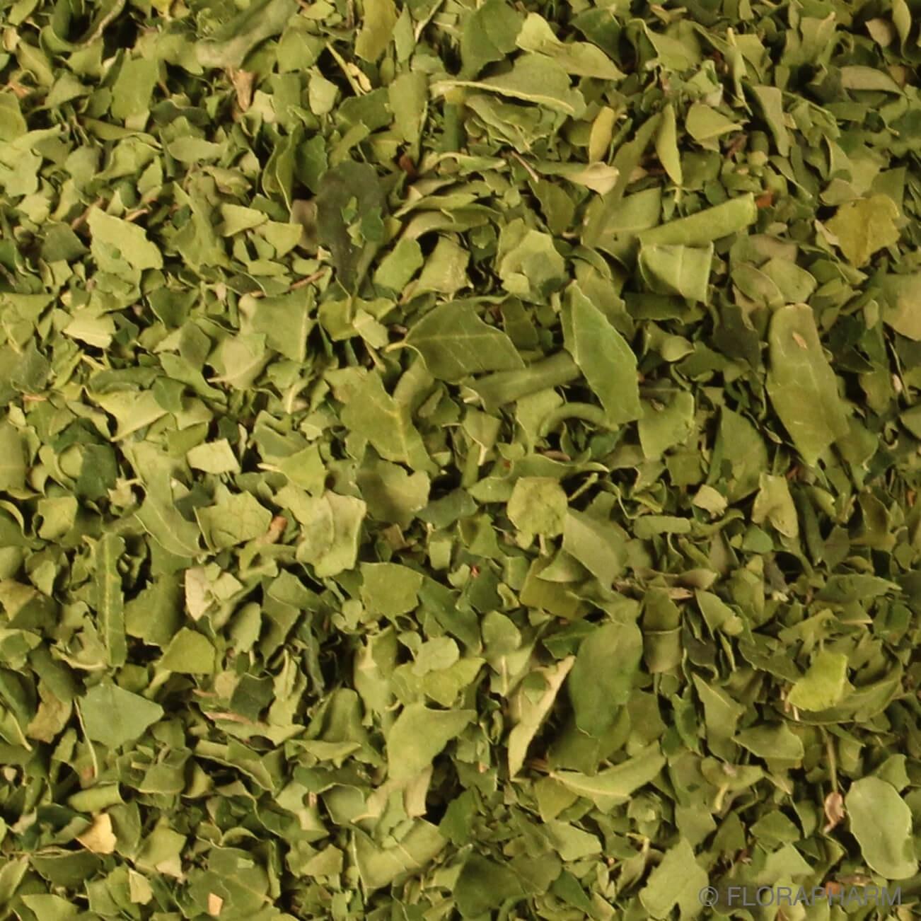 Moringablätter geschnitten
