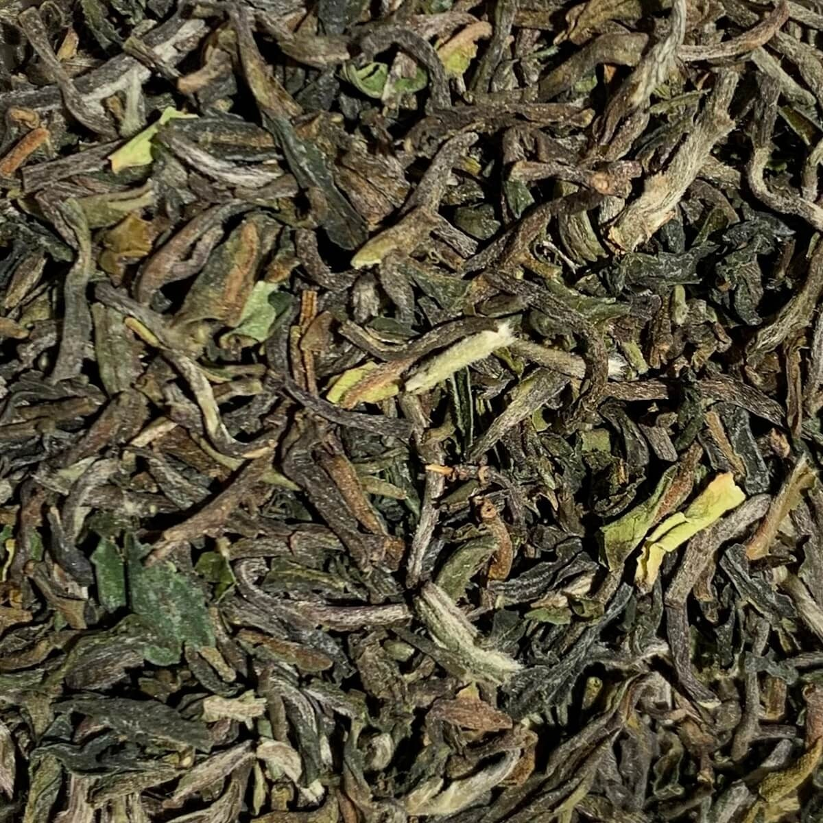 Flugtee 2019 - Darjeeling First Flush