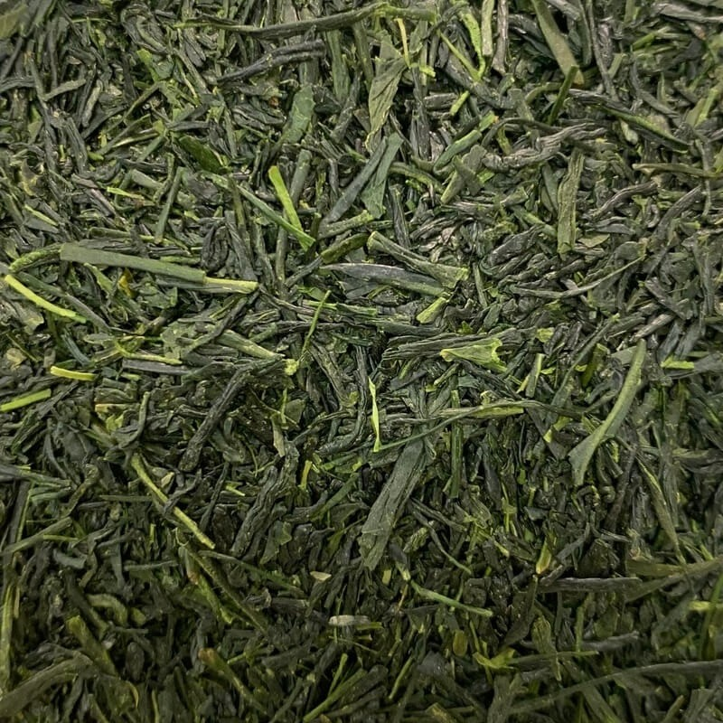 Japan Shincha Ernte 2020