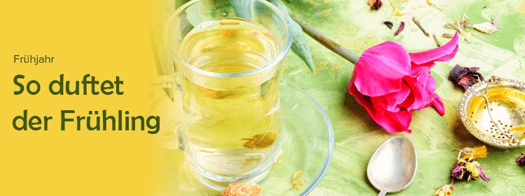 Frühjahr Tee